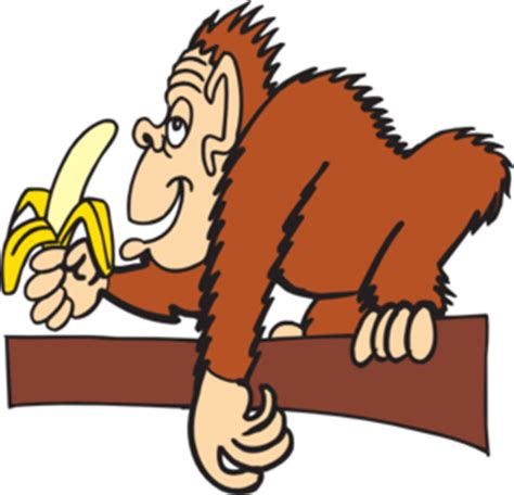 ape clipart ape with a banana clip at clker vector clip
