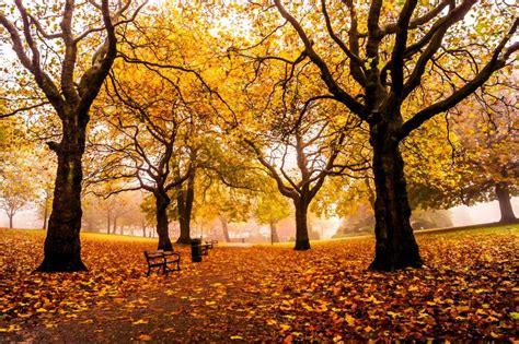 imagenes de otoño en londres inglaterra en oto 241 o inglaterra ws
