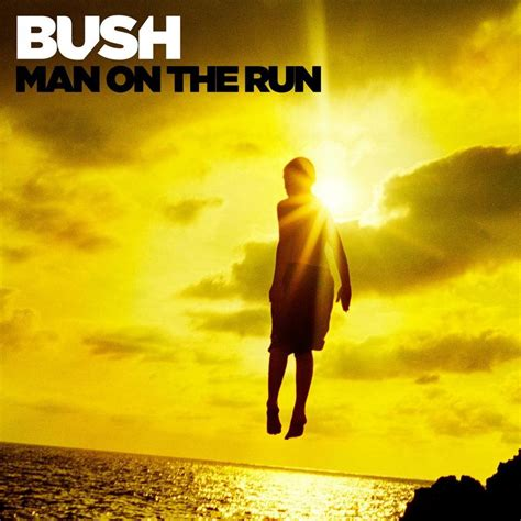 house on fire lyrics bush this house is on fire lyrics genius lyrics