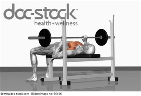 bench press movement bench press movement 28 images add varieties to your bench press talha life