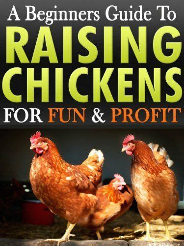 96 Best Images About Chicken Tips On Pinterest Cold Backyard Chickens For Beginners