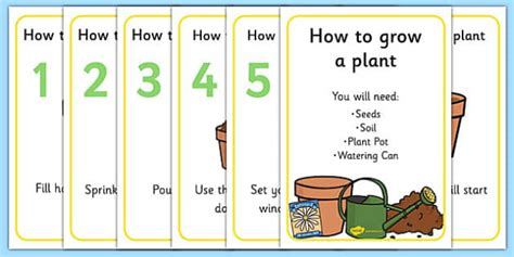 grow  plant display posters teacher