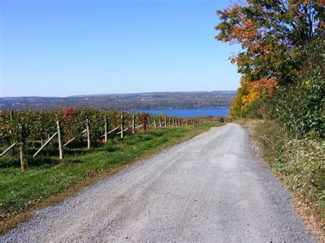 Seneca Lake Cottages by Seneca Lake Cabin Rental Been There Done That