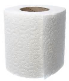 Toilet Paper Toilet Paper Wedding Dresses Say What