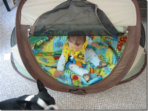 peapod plus baby travel bed kidco peapod plus kids travel bed review giveaway
