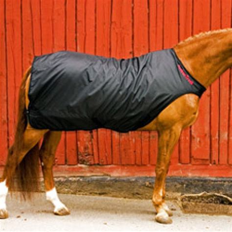 back on track rugs for horses back on track exercise machine therapy rug