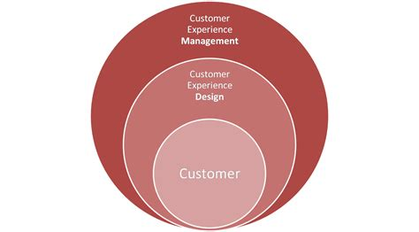customer experience experience web