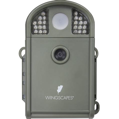 wingscapes birdcam pro moultrie wingscapes birdcam pro digital wildlife camera