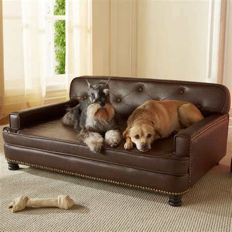 couches for dogs 1000 ideas about dog sofa bed on pinterest her her dog