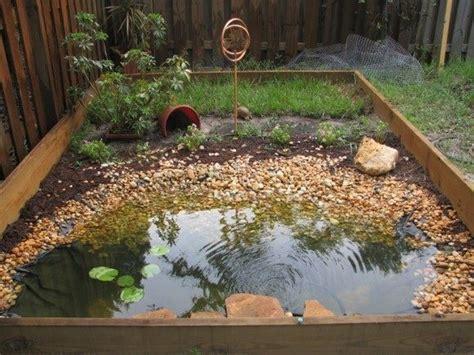 Backyard Habitat Ideas with Box Turtle Habitat Just Awsome Pinterest