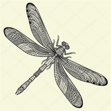 dragonfly stock vector 169 tets 13920554