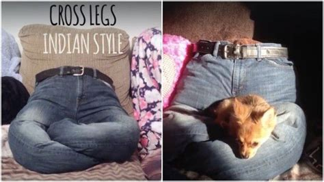 is your bed made is your sweater on diy no sew dog bed made from your old clothes usefuldiy com