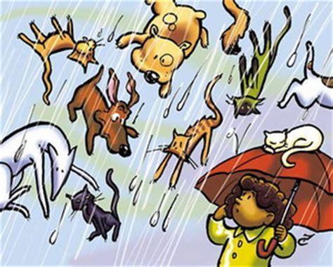 raining cats and dogs origin bloggang aisha