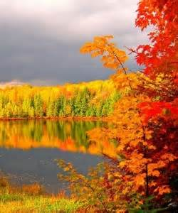 fall colors 2015 manitowish waters wisconsin fall color report