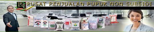 Pupuk Npk Mutiara Asli penjual pupuk non subsidi asli npk urea tsp kcl dap