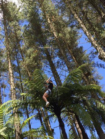 theme park new zealand north island adrenalin forest tauranga new zealand top tips before