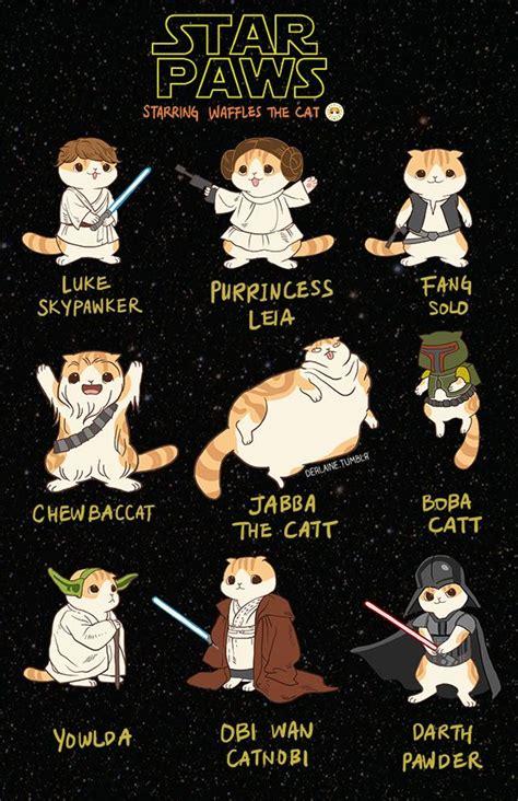 Star Wars Sex Meme - 25 best ideas about star wars meme on pinterest funny