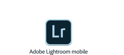 light room mobile lightroom mobile july 2017 updates brush and details for