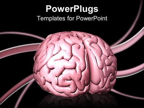 templates for powerpoint brain powerpoint template a depiction of human brain with