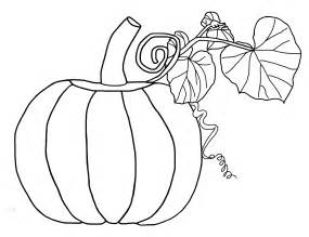 pumpkin coloring free printable pumpkin coloring pages for