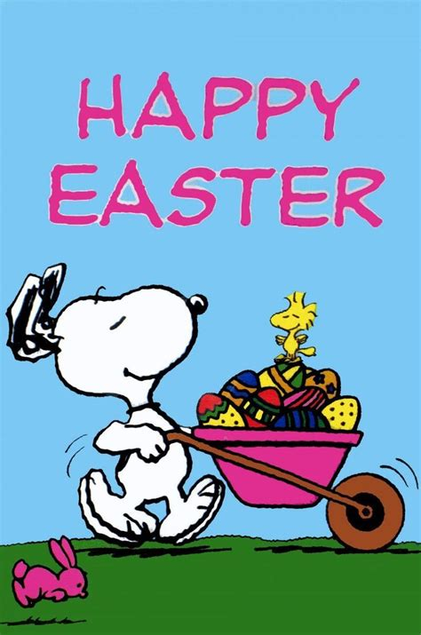 happy easter snoopy pictures   images