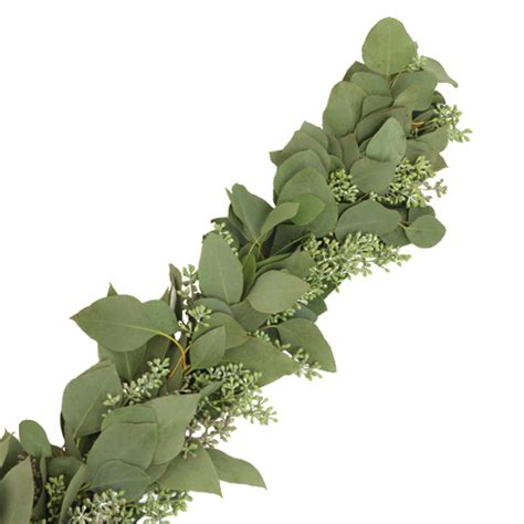 Cake Decorating Supplies Wholesale Seeded Eucalyptus Garland