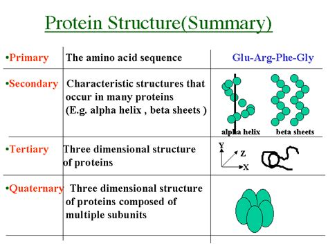 5 proteins and their functions biochemmania2014 biochemmania2014 page 2