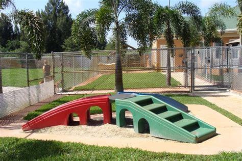 puppy playground playground ideas dogs