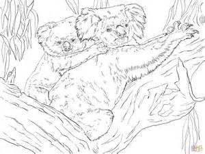 eucalyptus tree coloring page eucalyptus tree coloring page coloring pages