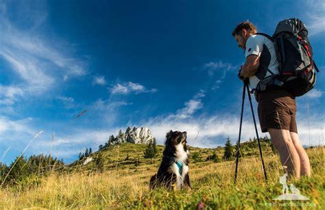 wandlen zum lesen hunde urlaub und bergwandern mit dem hund wandern