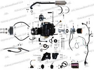 coolster atv 125cc engine diagram coolster get free