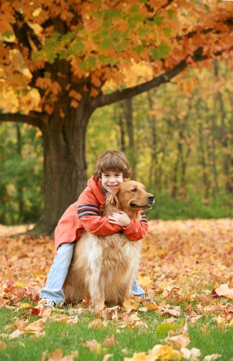 golden retriever shedding solutions boy hugging golden retriever outdoor patio ideas