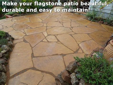 top 28 flagstone grout the 2 minute gardener february 2012 flexible grout for flagstone