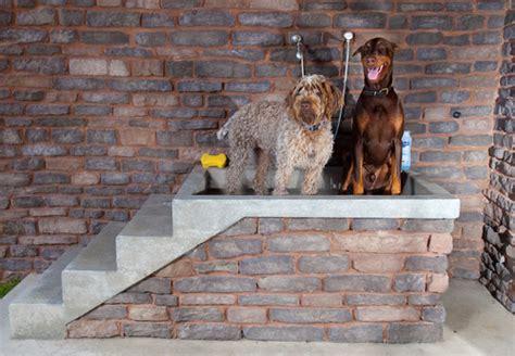 arredamento per cani arredamenti per cani design4 sweetanimals