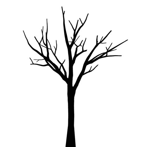 tree template without leaves tree no leaves clipart best