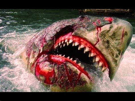 theme tour definition this is a full ride hd pov of the jaws great white shark