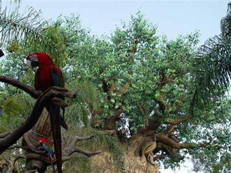 discovery island disney's animal kingdom theme park