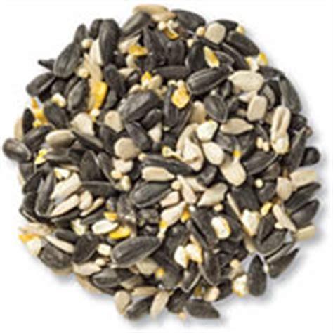 wild bird seed premium bird food duncraft wild bird