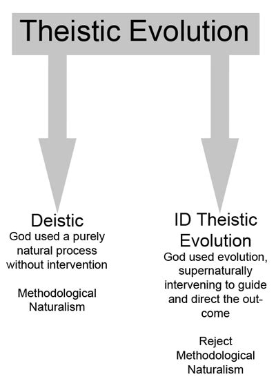 theistic evolution a scientific philosophical and theological critique books intelligent design archives undeception