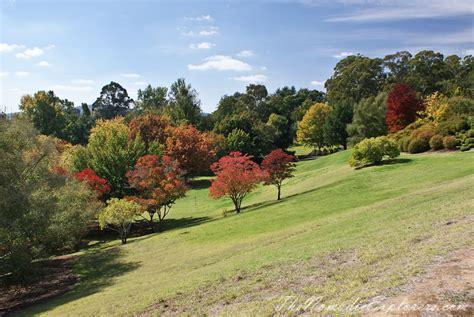 mount lofty botanic garden mount lofty botanic garden something for every season