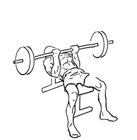 reverse triceps bench press reverse triceps bench press add this tricep exercise to