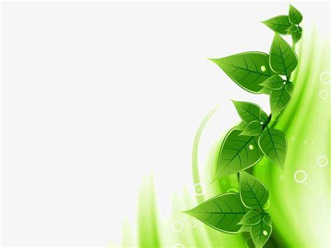 powerpoint design leaf green leaf background ppt green leaf ppt background png