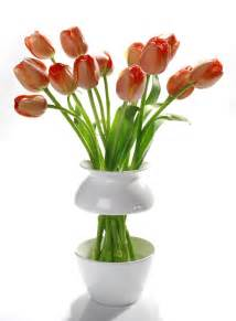 Vase Of Flowers Ways To Spruce Up Your Living Space Daily Trojan
