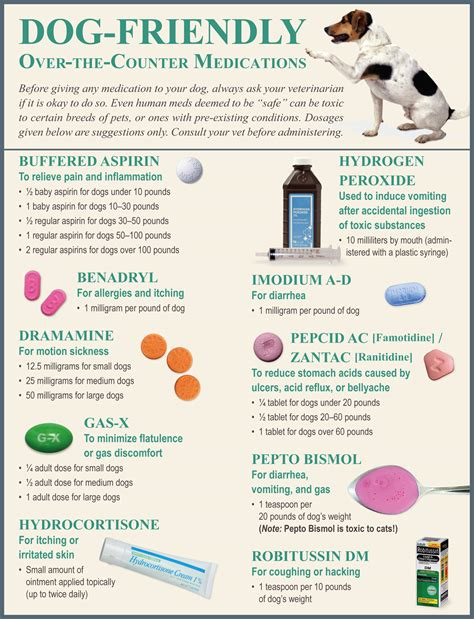 the counter meds for dogs management for dogs the ultimate science based owner s guide