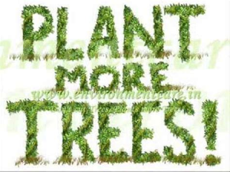 do not cut the tree to get the fruit don t cut trees plants more trees environmentcare in