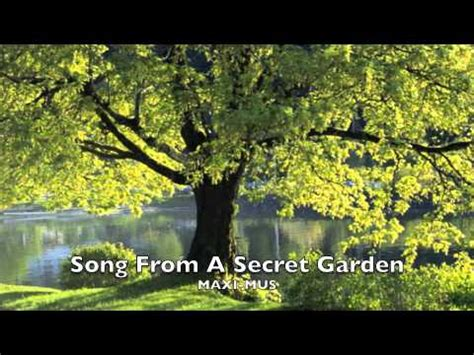 Maxi Violin song from a secret garden violin maxi mus