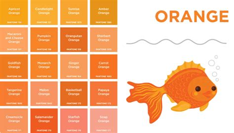 orange colors names image gallery orange color names