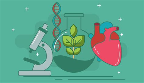 test ingresso biologia simulazione quiz biologia quizammissione it