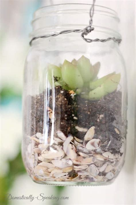 Hanging mason jar succulents domestically speaking