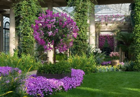 Hgtv Gardens by Now Live Hgtv Gardens Gail Wright At Home
